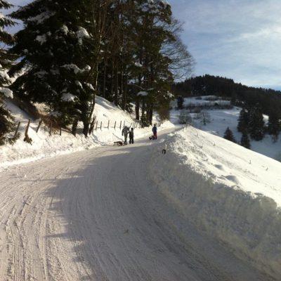 Wolfsgrueb Schlittelweg